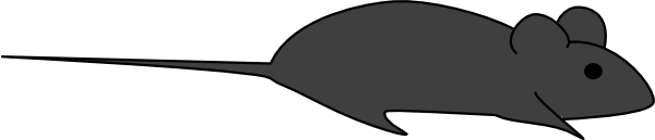 Dark Grey Lab Mouse Clip Art at Clker.com - vector clip art online ...