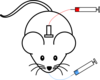 Mouse Antenna Blood Clip Art