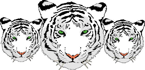 3 White Tiger Heads Clip Art at Clker.com - vector clip ...
