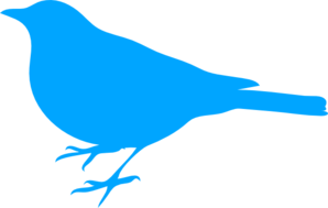 Bird Blue Beak Clip Art