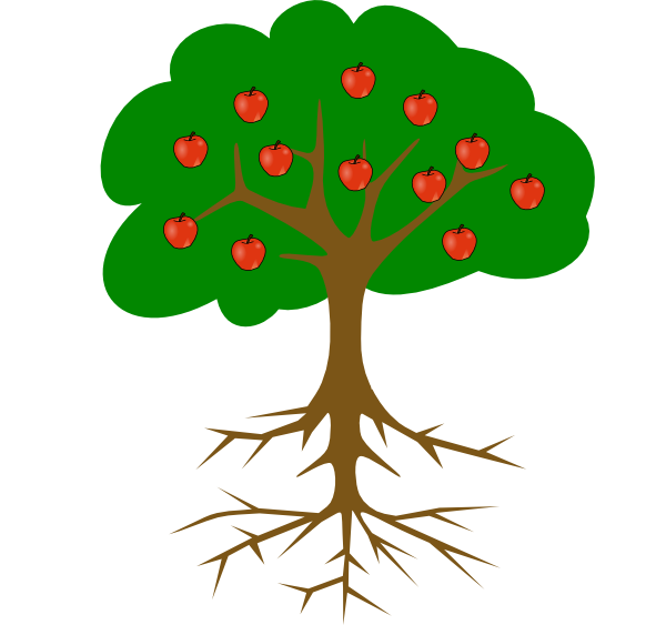 Fruit Tree And Roots Without Line Clip Art At Clker Com Vector