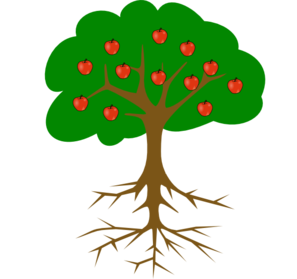 Fruit Tree And Roots Without Line Clip Art