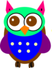 Colorful Baby Owl Clip Art