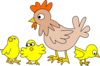Chooks Clip Art