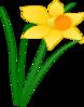 Daffodil 1 Clip Art