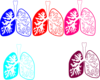 Lung Color Tika Hp Due Clip Art