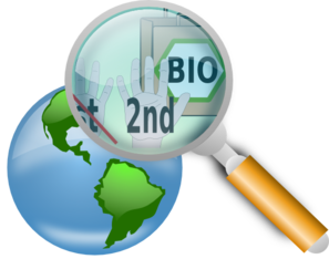 World Search  Clip Art