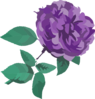 Purple Flower No Background Clip Art