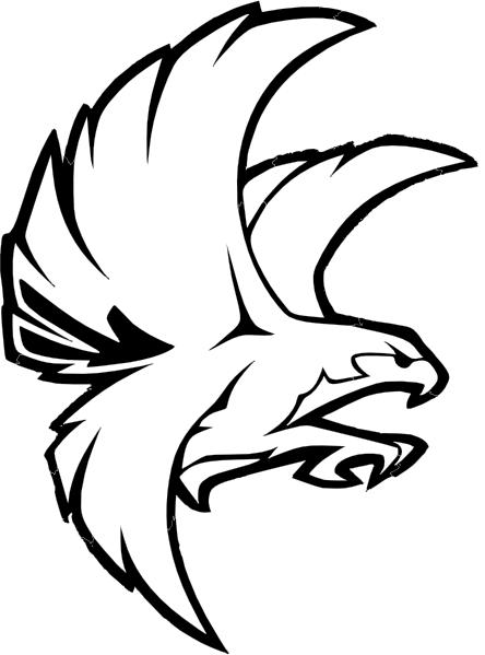Falcon graphic - photo#8
