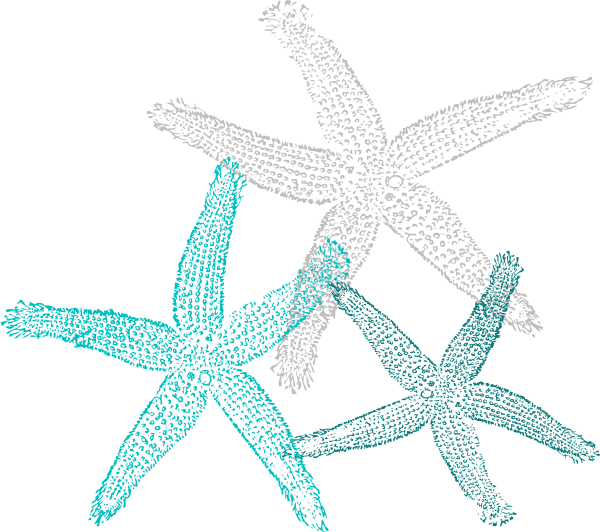 Multiple Teal Starfish Clip Art at Clker.com - vector clip art online ...