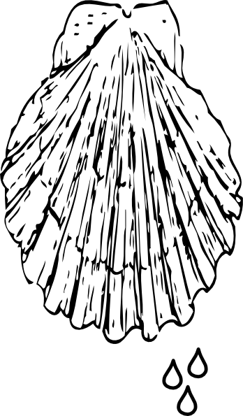 baptism shell coloring pages - photo#13