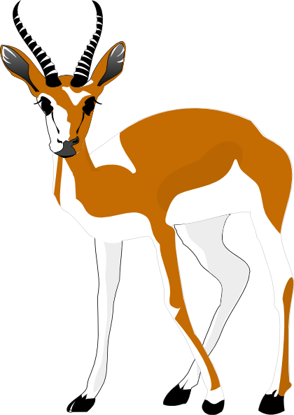 clipart springbok - photo #33