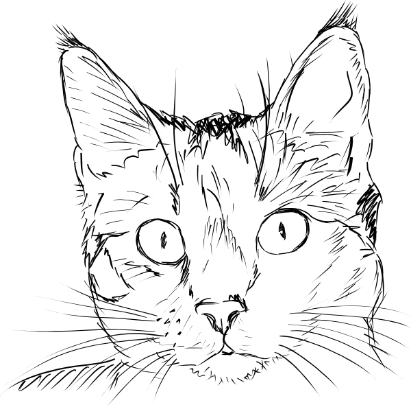 Line Drawing Of A Cat Face : Cat face clip art at clker vector online