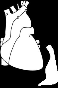 Heart Outline clip art - vector clip art online, royalty free ...