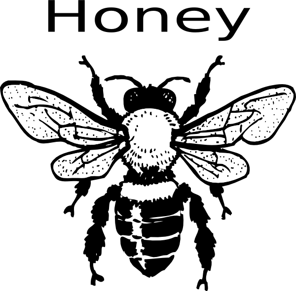 Honey bee clip art at clker vector clip art online royalty download this image as ccuart Image collections