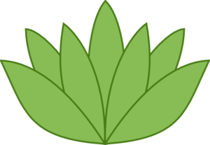 Green Lotus Clip Art