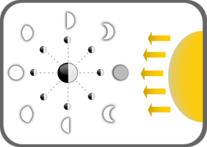 Diagram Of Moon Phases Clip Art