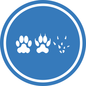 Paws With Circle Clip Art