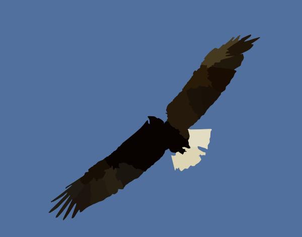 clip art soaring eagle - photo #46