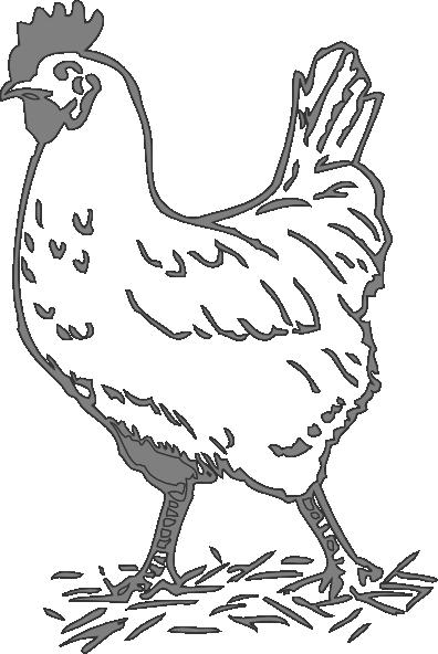 Gray Hen Clip Art At Clker Com Vector Clip Art Online