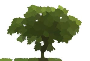 Loan Oak Tree Clip Art at Clker.com - vector clip art online, royalty ...  Oak Tree Clip Art
