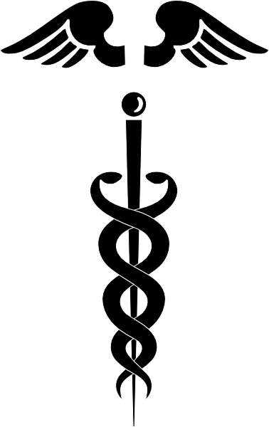 medical symbol clip art at clker com vector clip art online rh clker com caduceus medical symbol free vector caduceus medical symbol free vector
