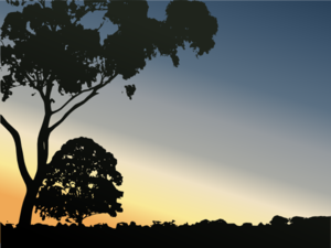 Sunset With Trees Clip Art
