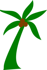Palm Tree With Coconuts Clip Art