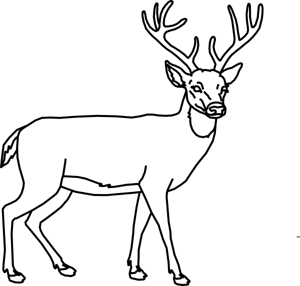 deer outline clip art at vector clip art