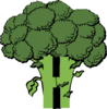 H Broccoli Clip Art