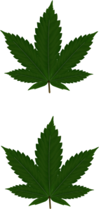 2 Cannabis Leaves Clip Art