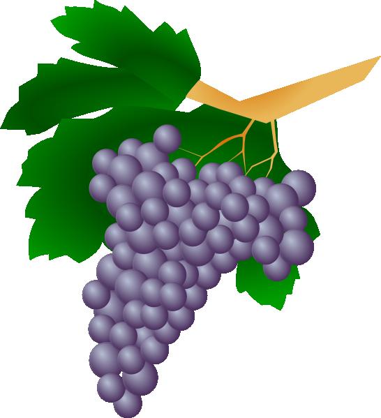 Purple Grapes Clip Art at Clker.com - vector clip art ...