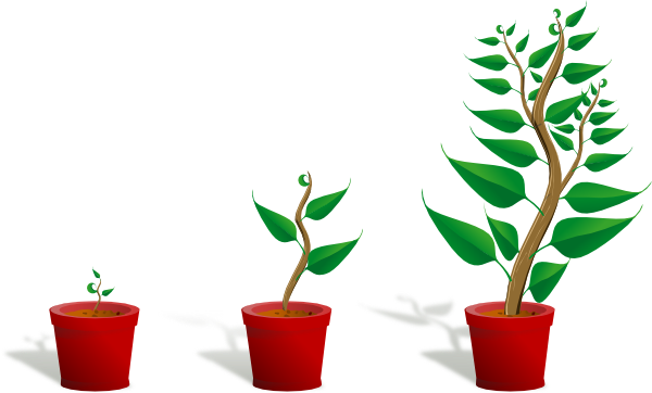 Plant Growth Clip Art at Clker.com  vector clip art online, royalty