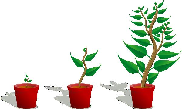 Plant Growth Clip Art at Clker.com  vector clip art online, royalty