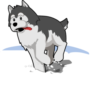 Husky Running In Snow Clip Art