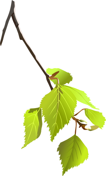 clipart tree with branches - photo #19