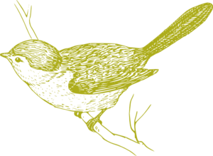 Green Bird On Branch Clip Art
