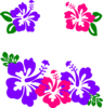 Group Of Hibiscus Clip Art