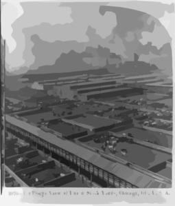 Birds  View on Birds Eye View Of Union Stock Yards  Chicago  Ill   U S A  Clip Art