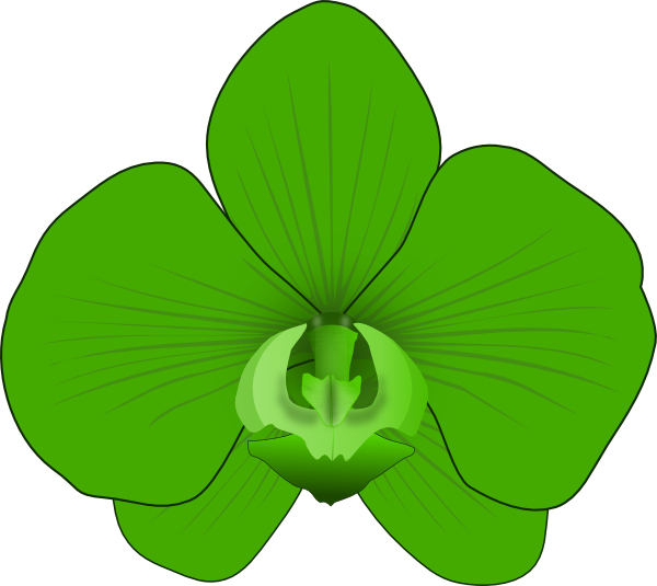 free green flower clipart - photo #33