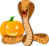 Snake And Pumpkin Clip Art
