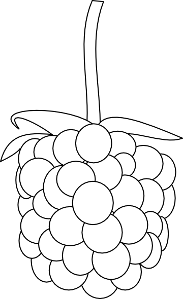 Raspberry Outline Clip Art at Clker.com - vector clip art ...