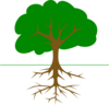 Tree And Roots Clip Art