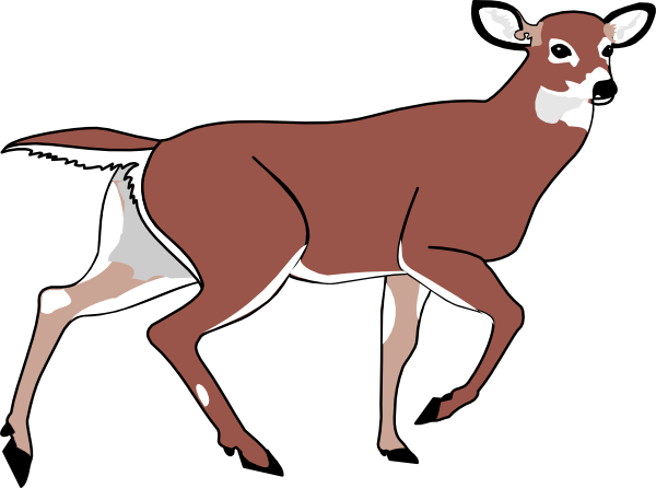 deer clip art at clker com vector clip art online royalty free rh clker com clipart of deer in woods clip art of deer in the woods