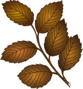 Fall Leaves Branch Clip Art
