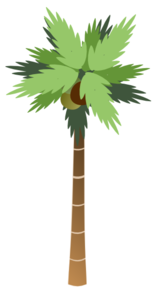 Coconut Palm Tree White Background Clip Art