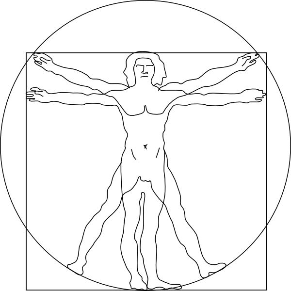 Vitruvian Man Clip Art at Clker.com - vector clip art ...