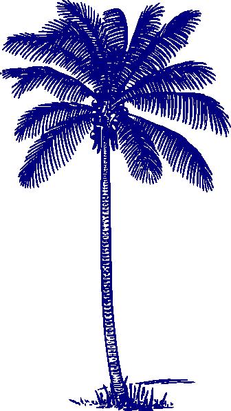 trees palm blue - photo #28