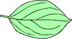 Another Light Green Oval Leaf Clip Art