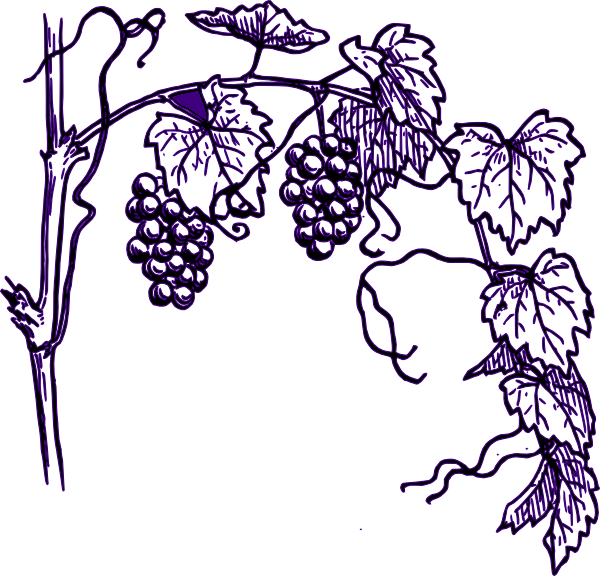 Purple Grape Vine clip art - vector clip art online, royalty free ...